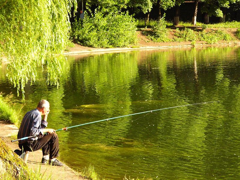 водоемы для ловли рыбы